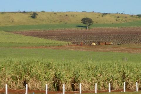 Falta de informações sobre terra é intencional, diz pesquisador