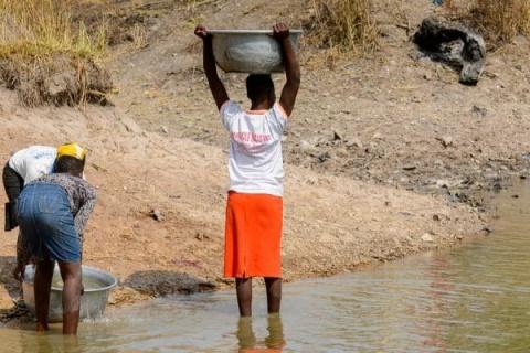 CONGO BASIN: Climate change threatens biodiversity