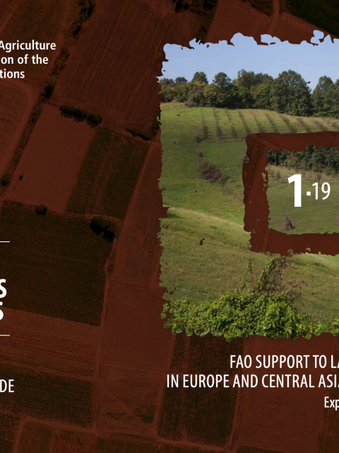 FAO Support to Land Consolidation in Europe and Central Asia During 2002-2018 cover image