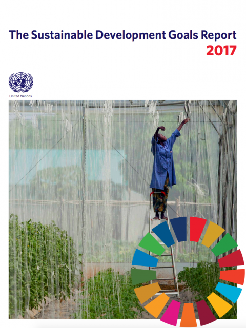 The Sustainable Development Goals Report 2017 cover image
