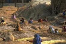 Rural Land India