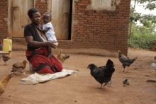 For women in rural Uganda Newcastle Disease vaccine is more than just protecting chickens