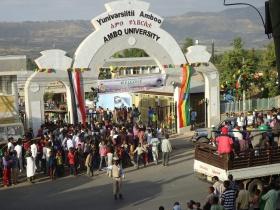 Ambo University logo