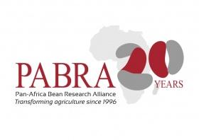 Pan-Africa Bean Research Alliance logo